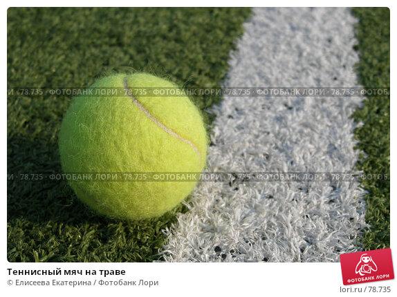 Теннисный мяч на траве, фото № 78735, снято 3 мая 2006 г. (c) Елисеева Екатерина / Фотобанк Лори