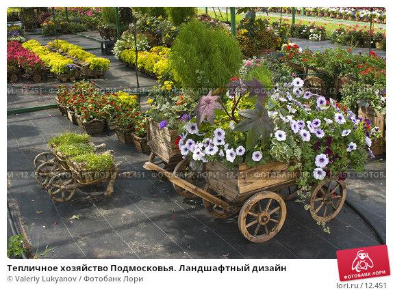 Тепличное хозяйство Подмосковья. Ландшафтный дизайн, фото № 12451, снято 8 июля 2005 г. (c) Valeriy Lukyanov / Фотобанк Лори