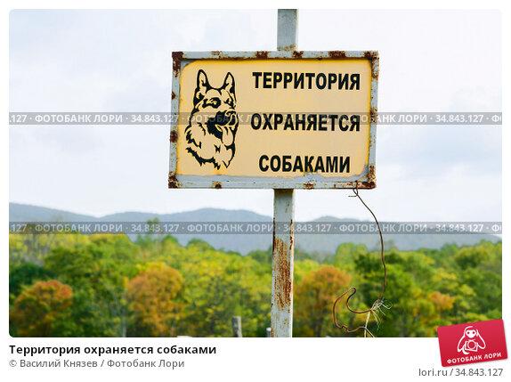 Территория охраняется собаками. Редакционное фото, фотограф Василий Князев / Фотобанк Лори