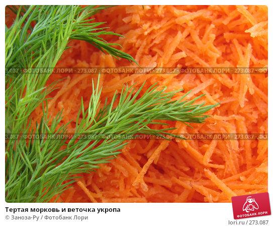 Тертая морковь и веточка укропа, фото № 273087, снято 26 апреля 2008 г. (c) Заноза-Ру / Фотобанк Лори