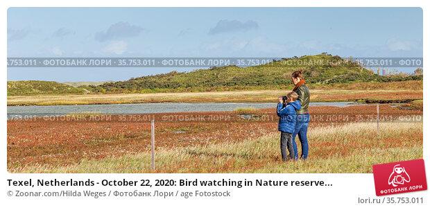 Texel, Netherlands - October 22, 2020: Bird watching in Nature reserve... Стоковое фото, фотограф Zoonar.com/Hilda Weges / age Fotostock / Фотобанк Лори
