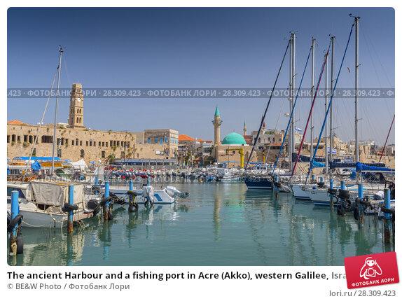 Купить «The ancient Harbour and a fishing port in Acre (Akko), western Galilee, Israel», фото № 28309423, снято 20 апреля 2018 г. (c) BE&W Photo / Фотобанк Лори