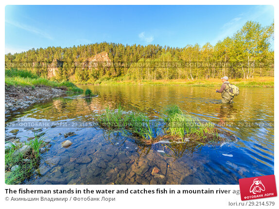 Купить «The fisherman stands in the water and catches fish in a mountain river against the background of a rock covered with forest», фото № 29214579, снято 8 сентября 2017 г. (c) Акиньшин Владимир / Фотобанк Лори