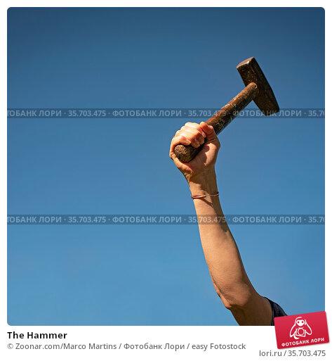 The Hammer. Стоковое фото, фотограф Zoonar.com/Marco Martins / easy Fotostock / Фотобанк Лори