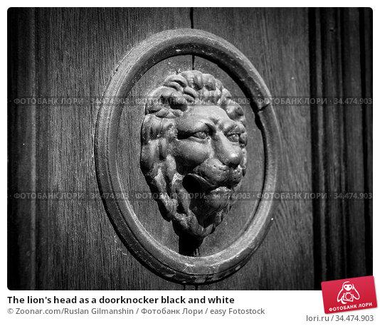 The lion's head as a doorknocker black and white. Стоковое фото, фотограф Zoonar.com/Ruslan Gilmanshin / easy Fotostock / Фотобанк Лори
