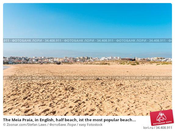 The Meia Praia, in English, half beach, ist the most popular beach... Стоковое фото, фотограф Zoonar.com/Stefan Laws / easy Fotostock / Фотобанк Лори