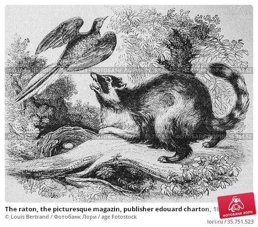 The raton, the picturesque magazin, publisher edouard charton, 1860. (2009 год). Редакционное фото, фотограф Louis Bertrand / age Fotostock / Фотобанк Лори