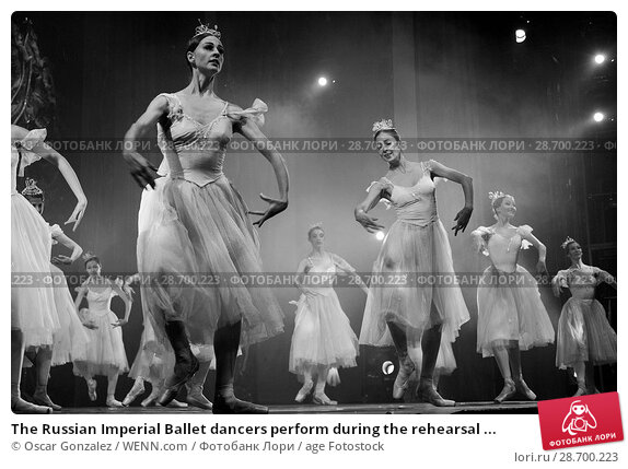 Купить «The Russian Imperial Ballet dancers perform during the rehearsal of 'El Cascanueces' at Lope de Vega Theatre in Madrid, Spain. Where: Madrid, Community...», фото № 28700223, снято 27 декабря 2016 г. (c) age Fotostock / Фотобанк Лори