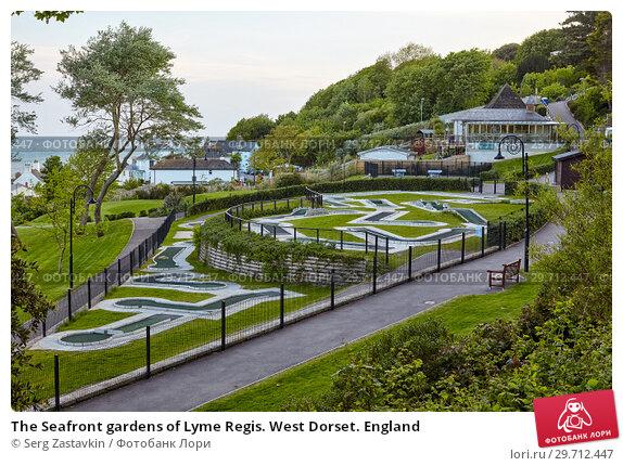 Купить «The Seafront gardens of Lyme Regis. West Dorset. England», фото № 29712447, снято 12 мая 2009 г. (c) Serg Zastavkin / Фотобанк Лори