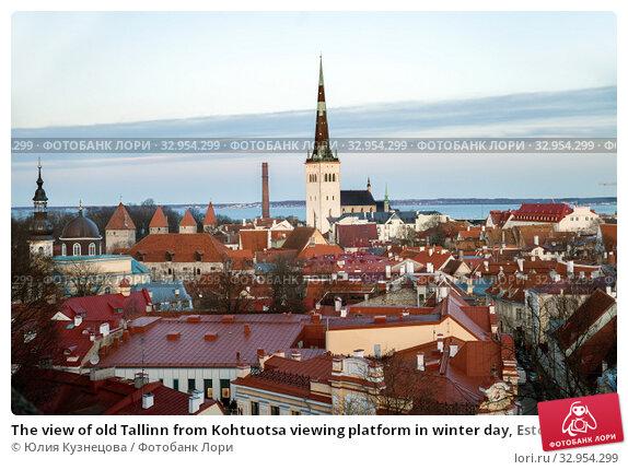 The view of old Tallinn from Kohtuotsa viewing platform in winter day, Estonia (2019 год). Стоковое фото, фотограф Юлия Кузнецова / Фотобанк Лори