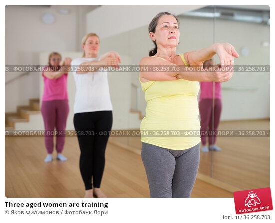 Three aged women are training. Стоковое фото, фотограф Яков Филимонов / Фотобанк Лори