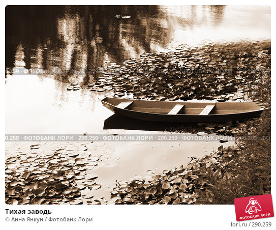 Тихая заводь, фото № 290259, снято 9 сентября 2007 г. (c) Анна Янкун / Фотобанк Лори