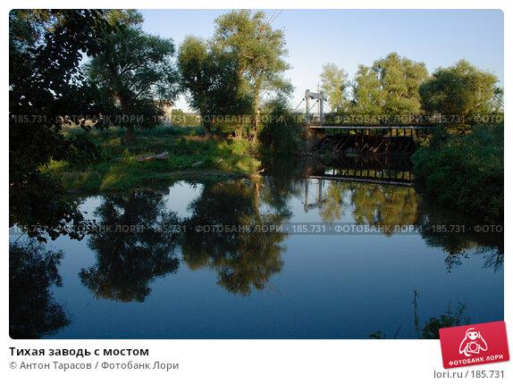 Тихая заводь с мостом, фото № 185731, снято 11 августа 2007 г. (c) Антон Тарасов / Фотобанк Лори