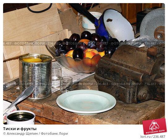 Тиски и фрукты, эксклюзивное фото № 236487, снято 4 августа 2007 г. (c) Александр Щепин / Фотобанк Лори