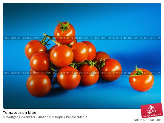 Tomatoes on blue. Стоковое фото, фотограф Wolfgang Zwanzger / PantherMedia / Фотобанк Лори