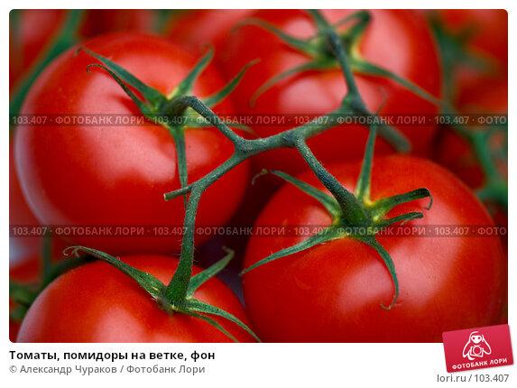 Томаты, помидоры на ветке, фон, фото № 103407, снято 29 марта 2017 г. (c) Александр Чураков / Фотобанк Лори
