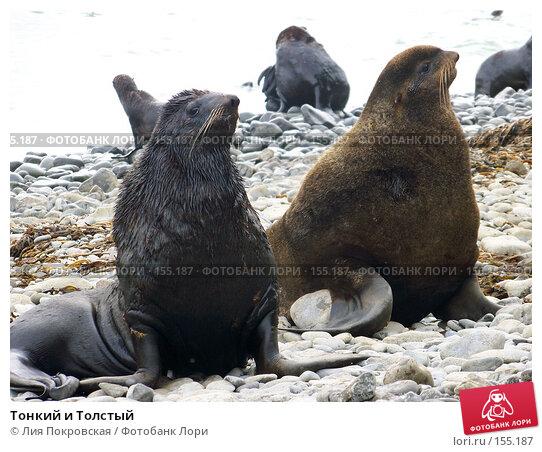Тонкий и Толстый, фото № 155187, снято 10 августа 2007 г. (c) Лия Покровская / Фотобанк Лори