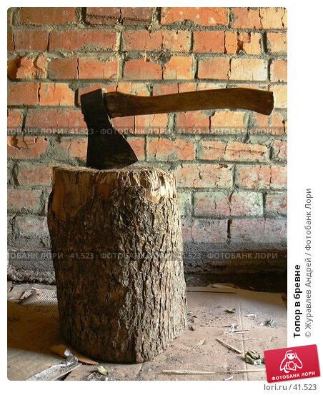 Топор в бревне, эксклюзивное фото № 41523, снято 6 мая 2007 г. (c) Журавлев Андрей / Фотобанк Лори