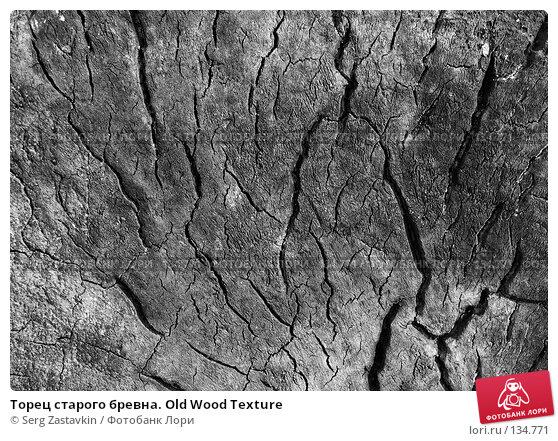 Торец старого бревна. Old Wood Texture, фото № 134771, снято 2 октября 2005 г. (c) Serg Zastavkin / Фотобанк Лори