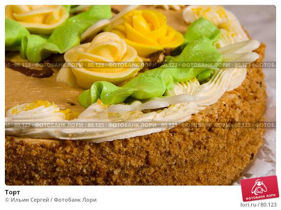 Купить «Торт», фото № 80123, снято 20 марта 2007 г. (c) Ильин Сергей / Фотобанк Лори