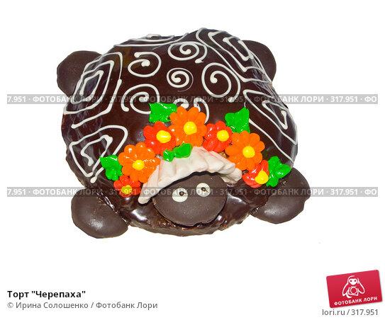 """Торт """"Черепаха"""", фото № 317951, снято 21 мая 2006 г. (c) Ирина Солошенко / Фотобанк Лори"""