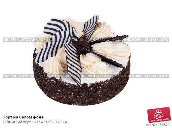 Торт на белом фоне, эксклюзивное фото № 251579, снято 24 декабря 2007 г. (c) Дмитрий Неумоин / Фотобанк Лори