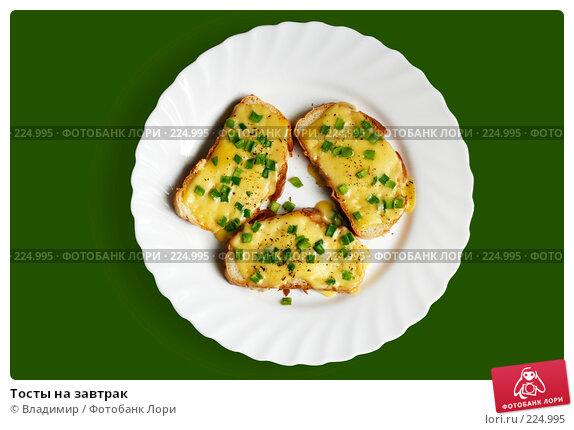 Тосты на завтрак, фото № 224995, снято 10 марта 2008 г. (c) Владимир / Фотобанк Лори