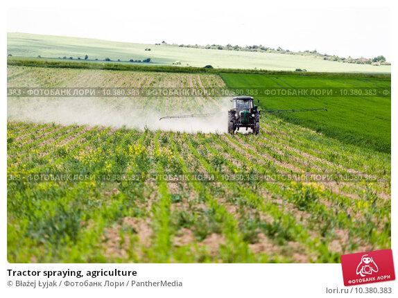 Купить «Tractor spraying, agriculture», фото № 10380383, снято 21 февраля 2019 г. (c) PantherMedia / Фотобанк Лори