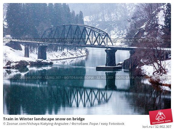 Train in Winter landscape snow on bridge. Стоковое фото, фотограф Zoonar.com/Vichaya Kiatying-Angsulee / easy Fotostock / Фотобанк Лори