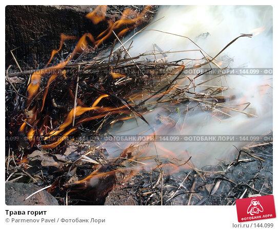 Купить «Трава горит», фото № 144099, снято 6 мая 2007 г. (c) Parmenov Pavel / Фотобанк Лори
