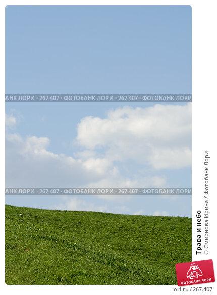 Трава и небо, фото № 267407, снято 27 апреля 2008 г. (c) Смирнова Ирина / Фотобанк Лори