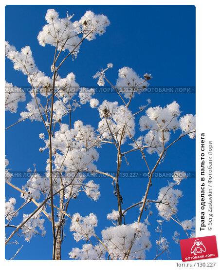 Купить «Трава оделась в пальто снега», фото № 130227, снято 18 декабря 2005 г. (c) Serg Zastavkin / Фотобанк Лори