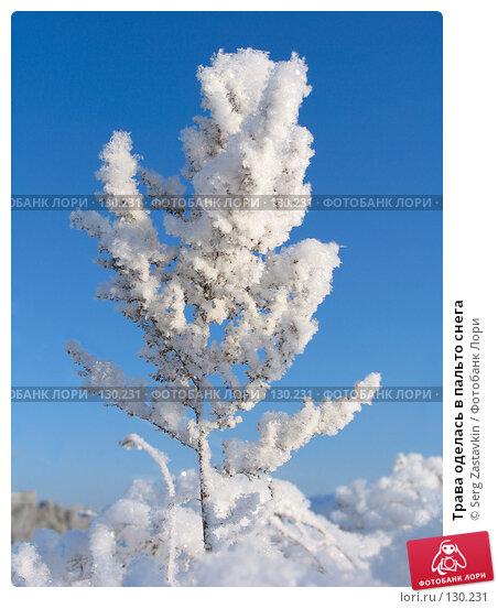 Трава оделась в пальто снега, фото № 130231, снято 18 декабря 2005 г. (c) Serg Zastavkin / Фотобанк Лори
