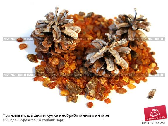 Три еловых шишки и кучка необработанного янтаря, фото № 163287, снято 19 декабря 2007 г. (c) Андрей Бурдюков / Фотобанк Лори