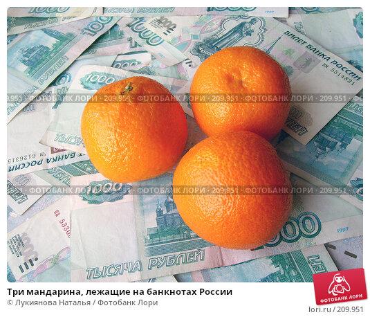 Три мандарина, лежащие на банкнотах России, фото № 209951, снято 17 февраля 2008 г. (c) Лукиянова Наталья / Фотобанк Лори