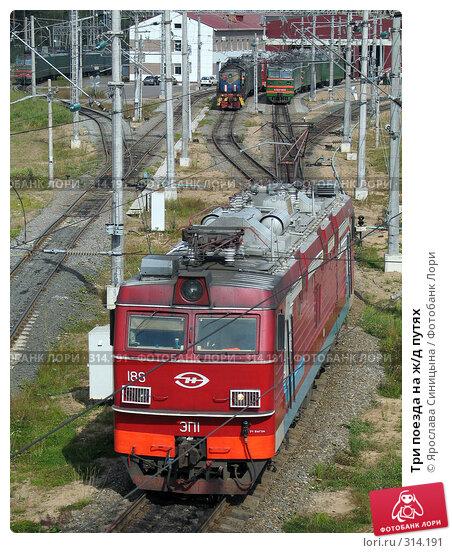 Три поезда на ж/д путях, фото № 314191, снято 15 августа 2007 г. (c) Ярослава Синицына / Фотобанк Лори