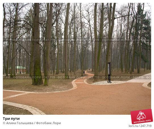 Три пути, эксклюзивное фото № 247719, снято 5 апреля 2008 г. (c) Алина Голышева / Фотобанк Лори