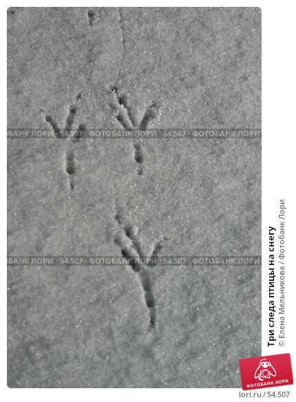 Три следа птицы на снегу, фото № 54507, снято 28 мая 2017 г. (c) Елена Мельникова / Фотобанк Лори