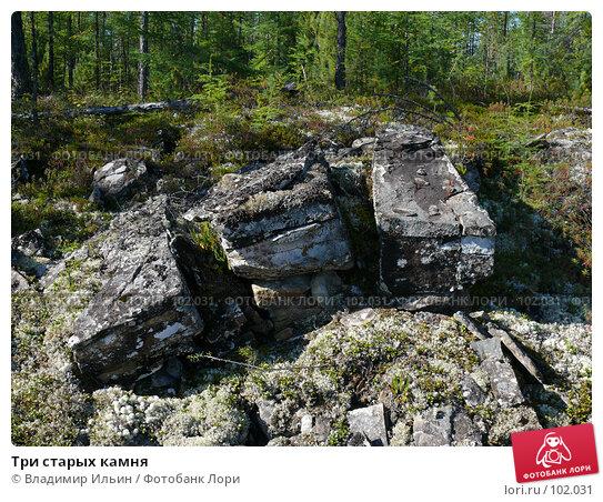 Три старых камня, фото № 102031, снято 11 декабря 2016 г. (c) Владимир Ильин / Фотобанк Лори