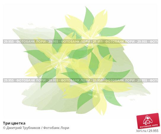 Три цветка, иллюстрация № 29955 (c) Дмитрий Трубников / Фотобанк Лори