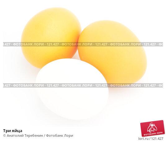 Три яйца, фото № 121427, снято 15 ноября 2007 г. (c) Анатолий Теребенин / Фотобанк Лори