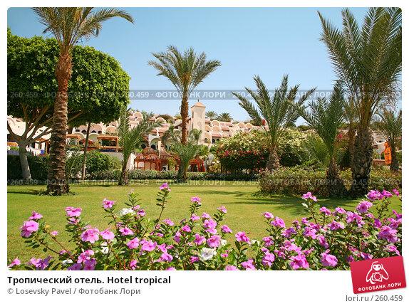 Купить «Тропический отель. Hotel tropical», фото № 260459, снято 17 мая 2007 г. (c) Losevsky Pavel / Фотобанк Лори
