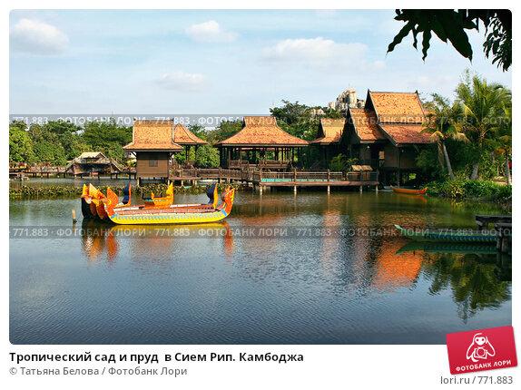 Купить «Тропический сад и пруд  в Сием Рип. Камбоджа», фото № 771883, снято 9 декабря 2008 г. (c) Татьяна Белова / Фотобанк Лори