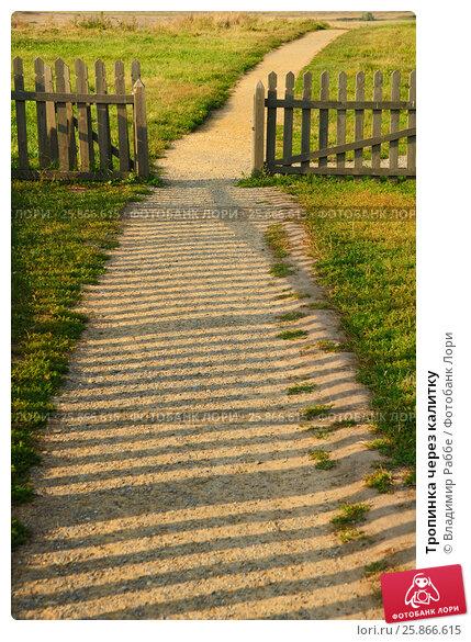 Тропинка через калитку, фото № 25866615, снято 27 августа 2015 г. (c) Владимир Раббе / Фотобанк Лори