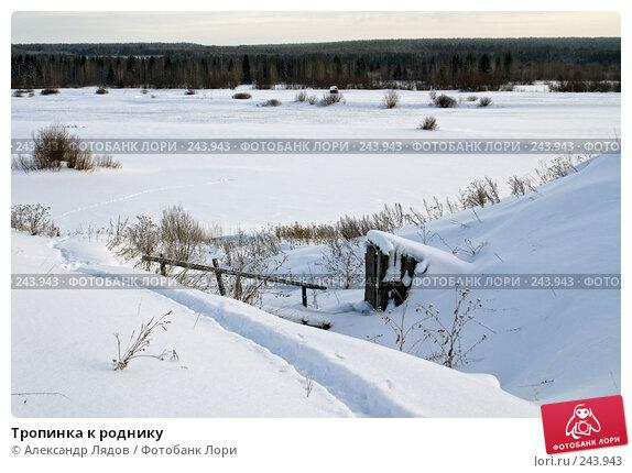 Тропинка к роднику, фото № 243943, снято 3 января 2008 г. (c) Александр Лядов / Фотобанк Лори
