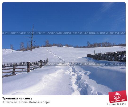 Тропинка на снегу, фото № 188151, снято 24 февраля 2007 г. (c) Талдыкин Юрий / Фотобанк Лори