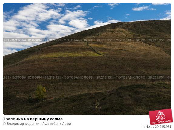 Купить «Тропинка на вершину холма», фото № 29215951, снято 1 октября 2018 г. (c) Владимир Федечкин / Фотобанк Лори