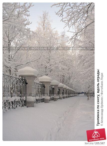 Купить «Тропинка по снегу, вдоль ограды», фото № 205587, снято 19 января 2008 г. (c) Александр Ерёмин / Фотобанк Лори