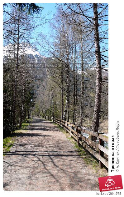 Тропинка в горах, фото № 264975, снято 27 апреля 2008 г. (c) А. Клипак / Фотобанк Лори