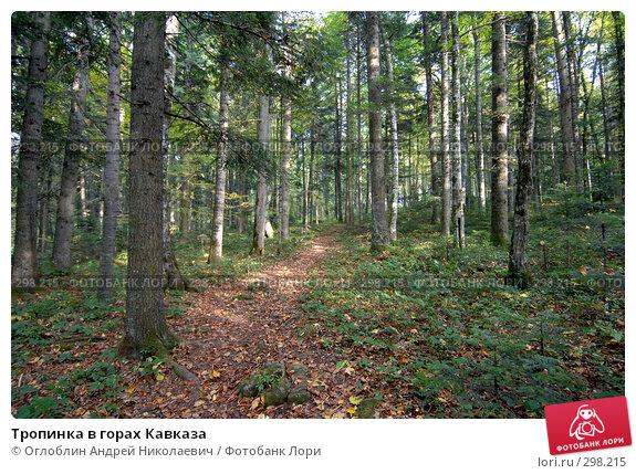 Тропинка в горах Кавказа, фото № 298215, снято 13 октября 2007 г. (c) Оглоблин Андрей Николаевич / Фотобанк Лори
